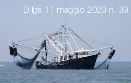 Decreto Legislativo 11 maggio 2020 n. 39