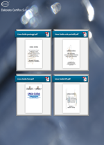 Linee Guida lavori temporanei in quota - Raccolta INAIL