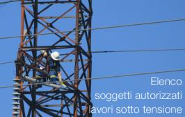 8° Elenco soggetti autorizzati ad effettuare lavori sotto tensione su impianti elettrici