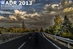ADR 2013 ONU lingua EN