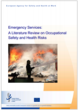 A literature review on occupational safety and health risks