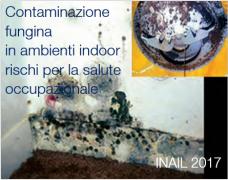 Contaminazione fungina in ambienti indoor: rischi per la salute occupazionale