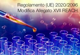 Regolamento (UE) 2020/2096   Modifica Allegato XVII REACH