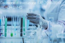 Decisione di esecuzione (UE) 2018/2013