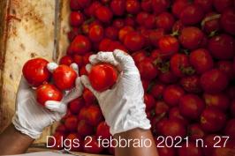 Decreto Legislativo 2 febbraio 2021 n. 27