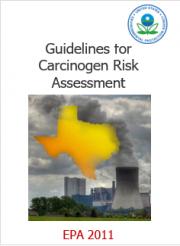 Guidelines for Carcinogen Risk Assessment EPA