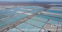 Five cobalt salts proposed for restriction - ECHA