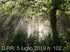 D.P.R. 5 luglio 2019 n. 102