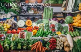 UNI ISO/TS 26030:2020