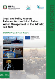 BALMAS Project Final Report