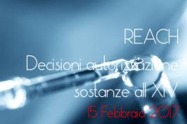 REACH: Decisioni autorizzazioni sostanze 15.02.2016
