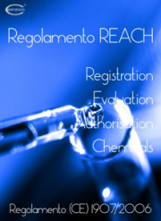 ebook Regolamento REACH
