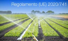 Regolamento (UE) 2020/741