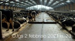 Decreto Legislativo 2 febbraio 2021 n. 23