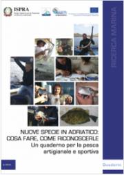 Nuove specie in Adriatico: cosa fare come riconoscerle