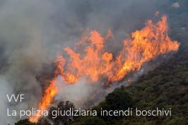 La polizia giudiziaria negli incendi boschivi VVF
