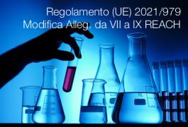 Regolamento (UE) 2021/979