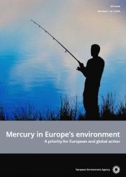 Mercury in Europe's environment