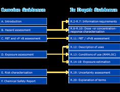 Guida alle prescrizioni in materia di informazione e alla valutazione della sicurezza chimica