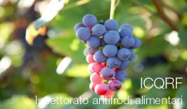 ICQRF - Ispettorato antifrodi alimentari