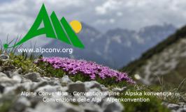 Convenzioni delle Alpi