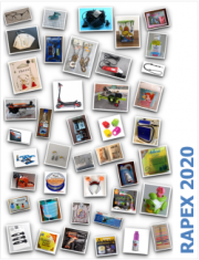 RAPEX: Report annuale Certifico 2020