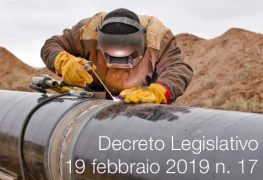 D.Lgs. 19 febbraio 2019 n. 17