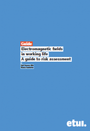 Electromagnetic fields in working life. A guide to risk assessment