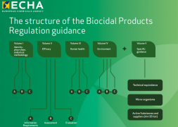 The structure of the Biocidal Products Regulation guidance