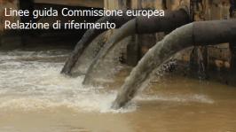 Linee guida della Commissione europea Relazione di riferimento