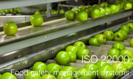 ISO 22000:2005 Preview