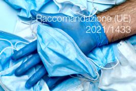 Raccomandazione (UE) 2021/1433