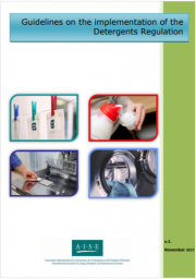 Guidelines on the implementation of the Detergents Regulation