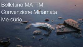 Bollettino MATTM Convenzione Minamata Mercurio