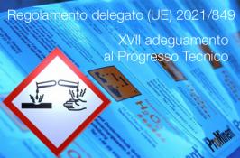 Regolamento delegato (UE) 2021/849