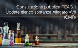 Consultazione pubblica REACH   Update elenco sostanze Allegato XVII