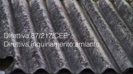 Direttiva 87/217/CEE