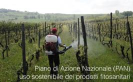 Piano Azione Nazionale (PAN) uso sostenibile prodotti fitosanitari   Bozza 2019