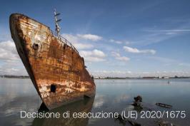 Decisione di esecuzione (UE) 2020/1675