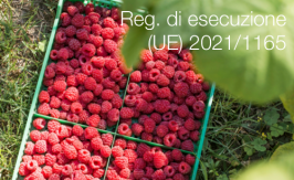 Regolamento di esecuzione (UE) 2021/1165