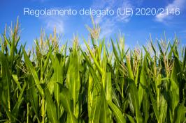 Regolamento delegato (UE) 2020/2146
