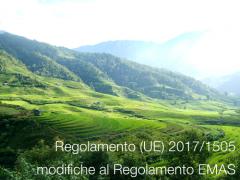 Regolamento (UE) 2017/1505