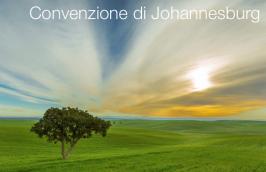 Convenzione di Johannesburg