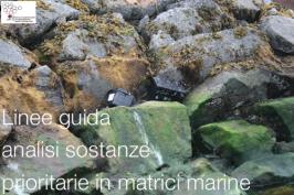 Linee guida analisi di sostanze prioritarie in matrici marine