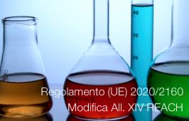 Regolamento (UE) 2020/2160