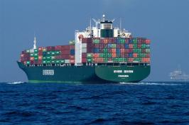 Container Handbook - GDV