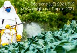 Decisione (UE) 2021/592 del Consiglio del 7 aprile 2021
