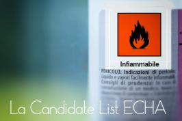 Candidate list ECHA: Sostanze estremamente preoccupanti SVHC