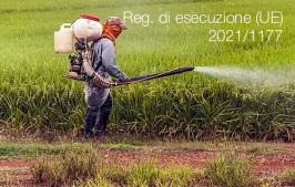 Regolamento di esecuzione (UE) 2021/1177