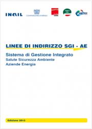 Linee di Indirizzo del Sistema SGI-AE: Modelli Applicativi - Industria, energia e petrolio